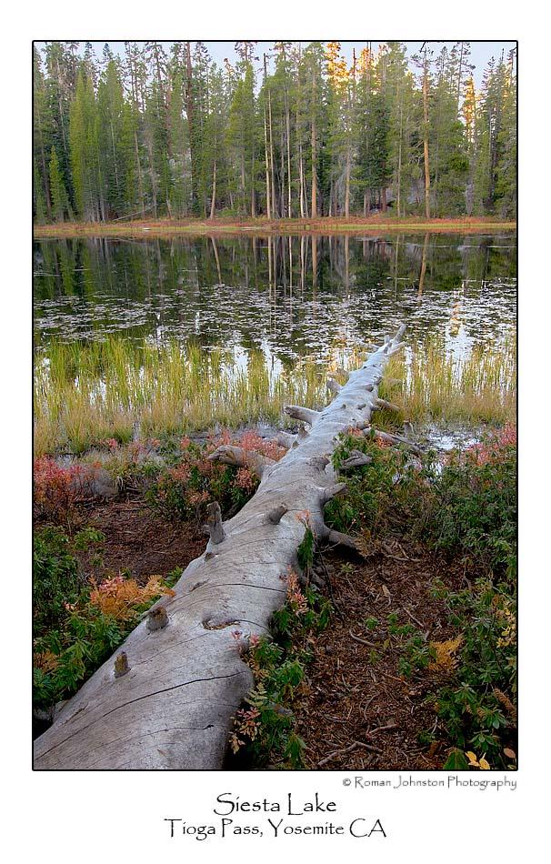 Siesta Lake Morning.jpg