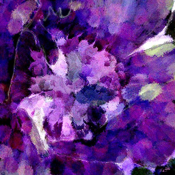purple flower post.jpg