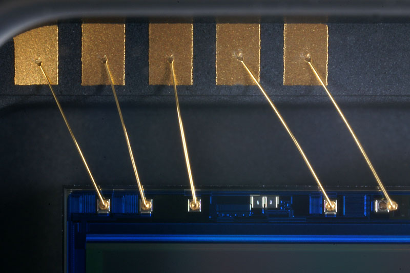 Sensor Wires 7776.jpg