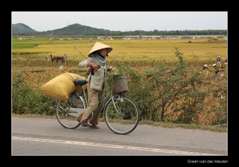 9351 Vietnam, heavy load