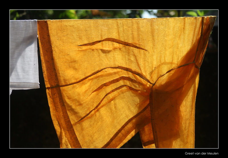 3146 Indonesia, in the dessa