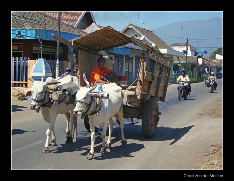 4172 Indonesia, transport