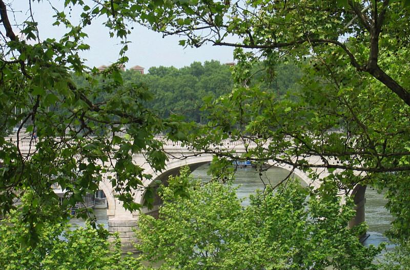 Glimpse of Tiber River  bridge