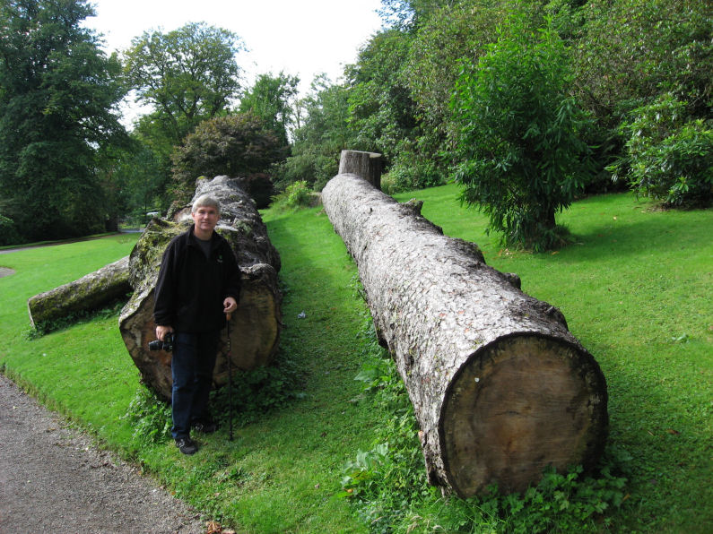Jim and large logs