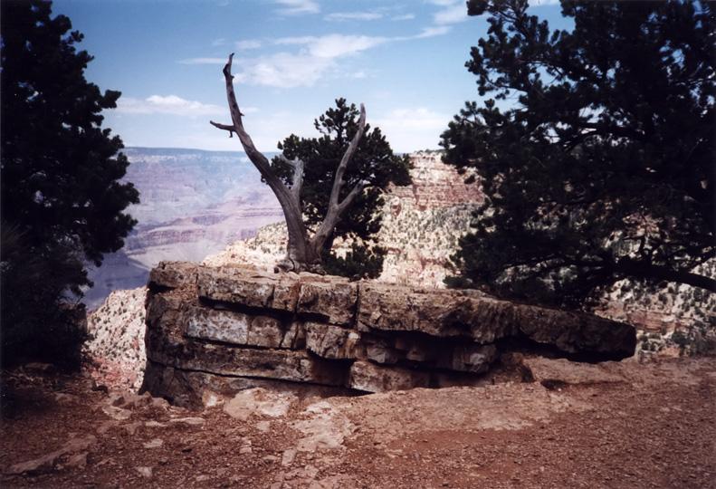 Grand Canyon - 1999