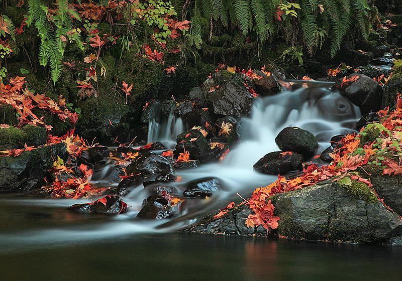 Whisky Creek (Large File)