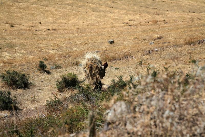 Man Carrying Grass
