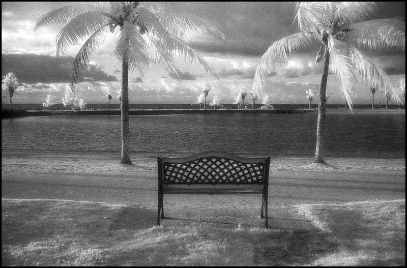 Black and White infrared photograph of a vista in Matheson Hammock park in South Miami, Florida, USA, 2006. Street Photography of Miami, San Francisco and Key West by Emir Shabashvili, see http://street-foto.com, http://miamistreetphoto.com, http://miamistreetphotography.com or http://miamistreetphotographer.com