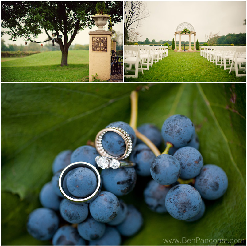 willow harbor, vineyard wedding, Michigan