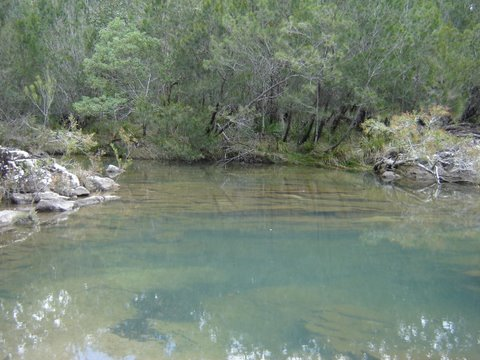 The Swimming Hole (Janet Kleiner)