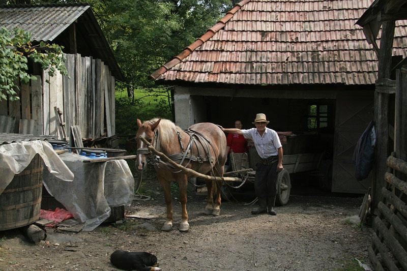 farmer in Maramures