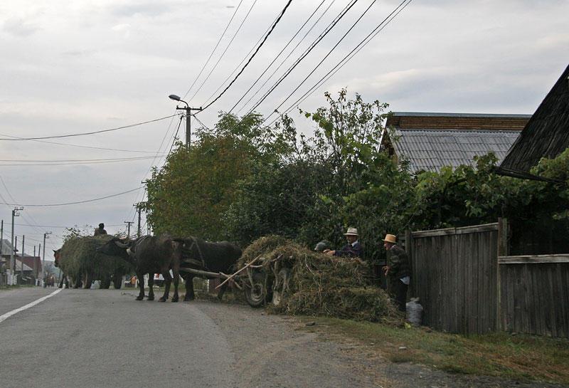 living in village
