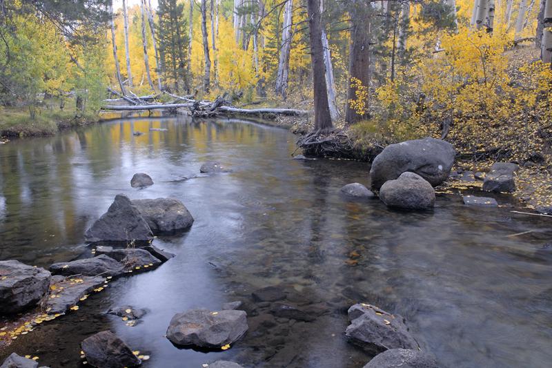 Green Creek 1