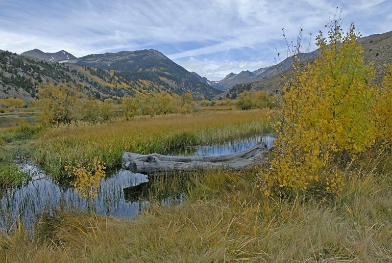 Green Creek 2