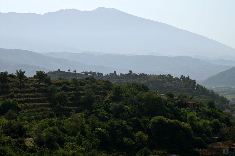 Berati - terraced fields
