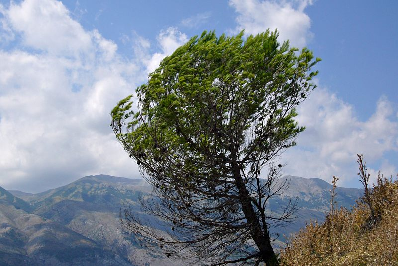 Drinos Valley near Gjirokastra