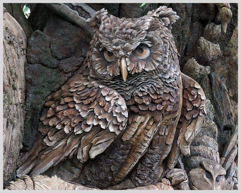 Tree of Life - Owl