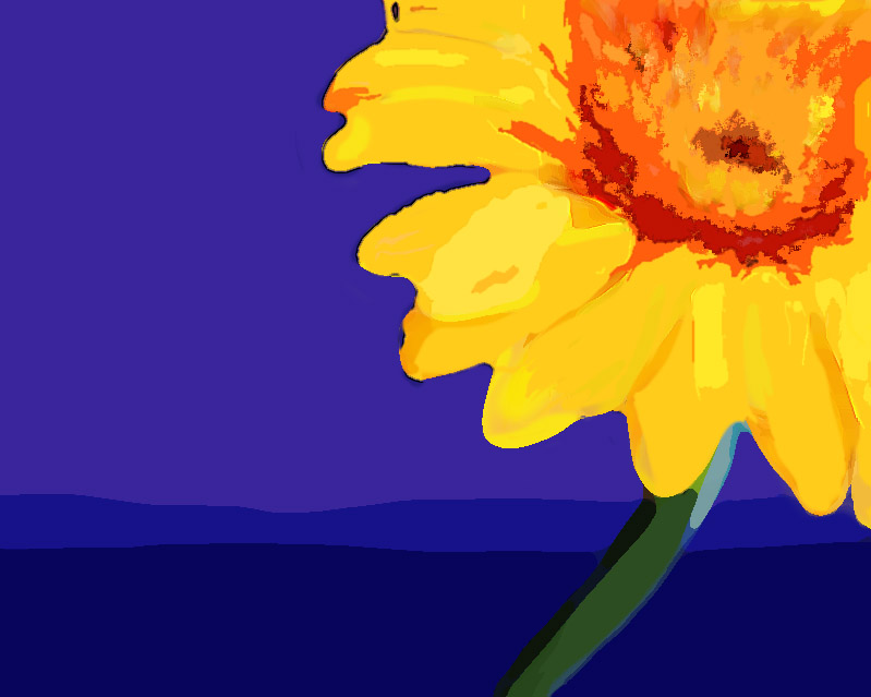 yellow-gerbera.jpg