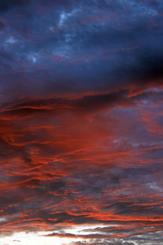 Verticle Sunrise