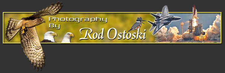 Serving Brevard County | Photographer Rod Ostoski