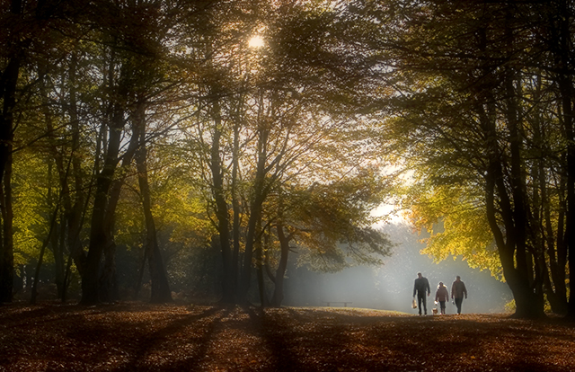 Sherwood Walk