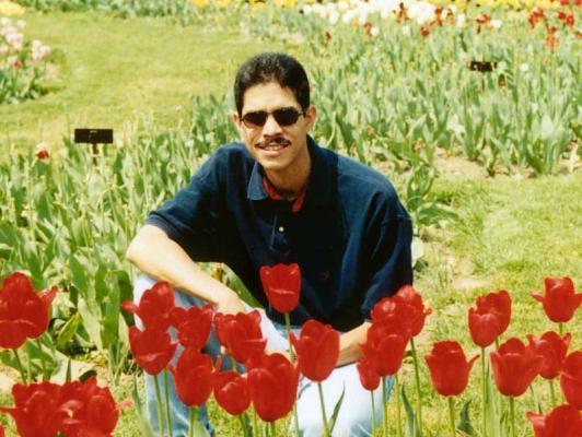 Con Tulipanes