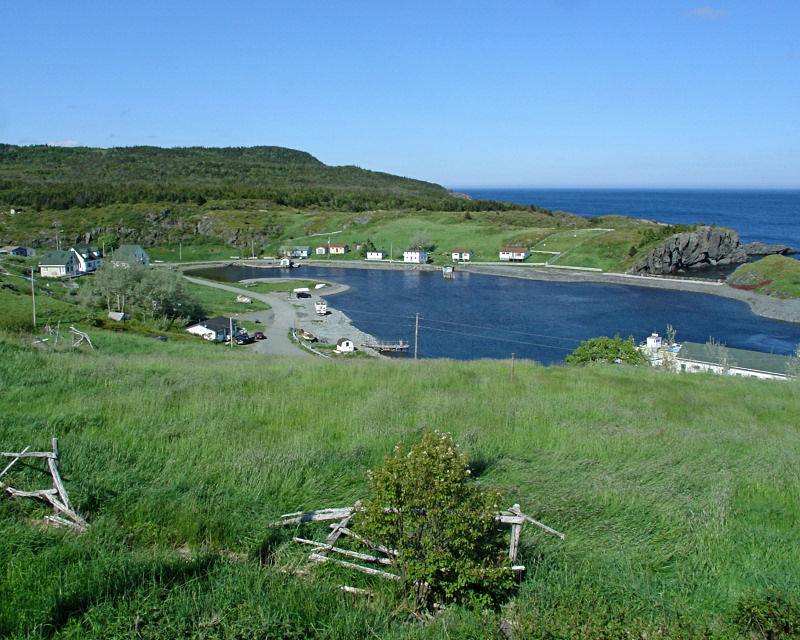 Southern Shore 006<br>Brigus South