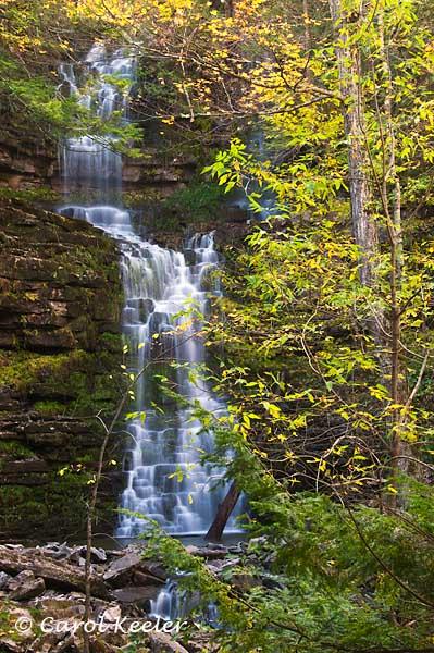 Chittenangos Occasional Falls