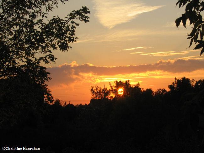 An autumn sunset over FWG