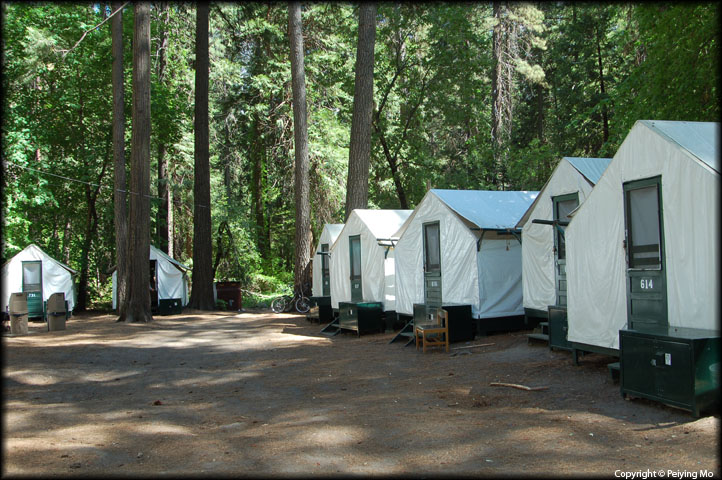 Curry Village: tents and bear-proof storage containers
