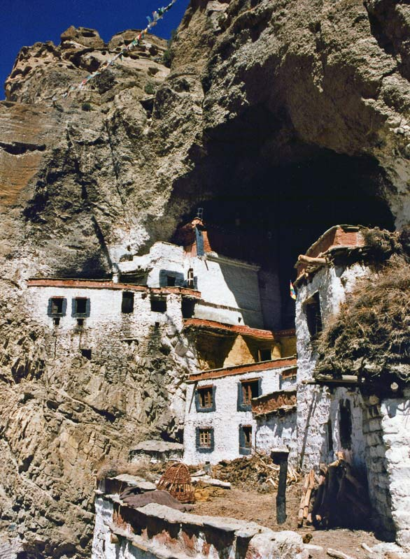 Phuctal houses