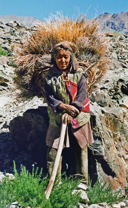 Lady with brushwood