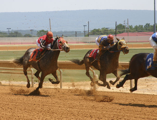 Charles Town Races