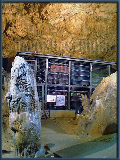 Awamori Cave Storage Vault