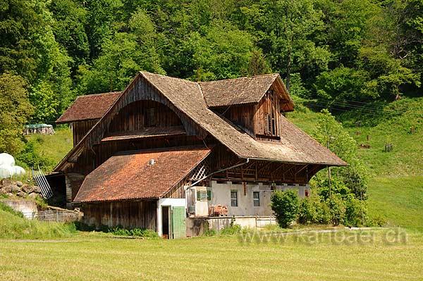 Walchwil (111339)