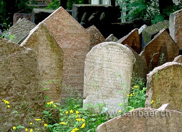 Friedhof (07608)