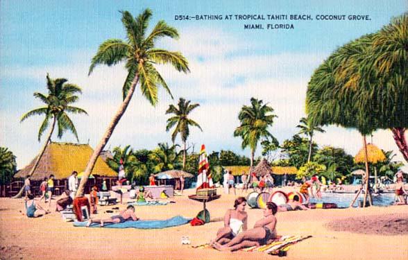 Tahiti Beach Coconut Grove Photo