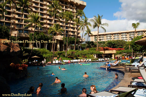 2009 One Of The Pools At Hyatt Regency On Kaanapali Beach