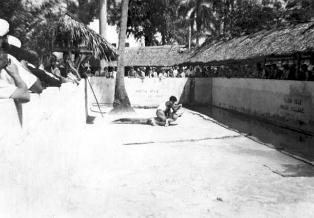 1940s - Gator Wrestling exhibition at the Musa Isle Indian Village