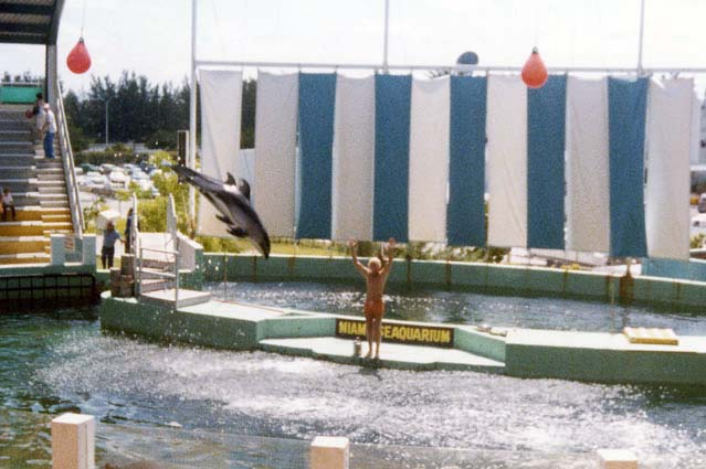 1970s - the Miami Seaquarium