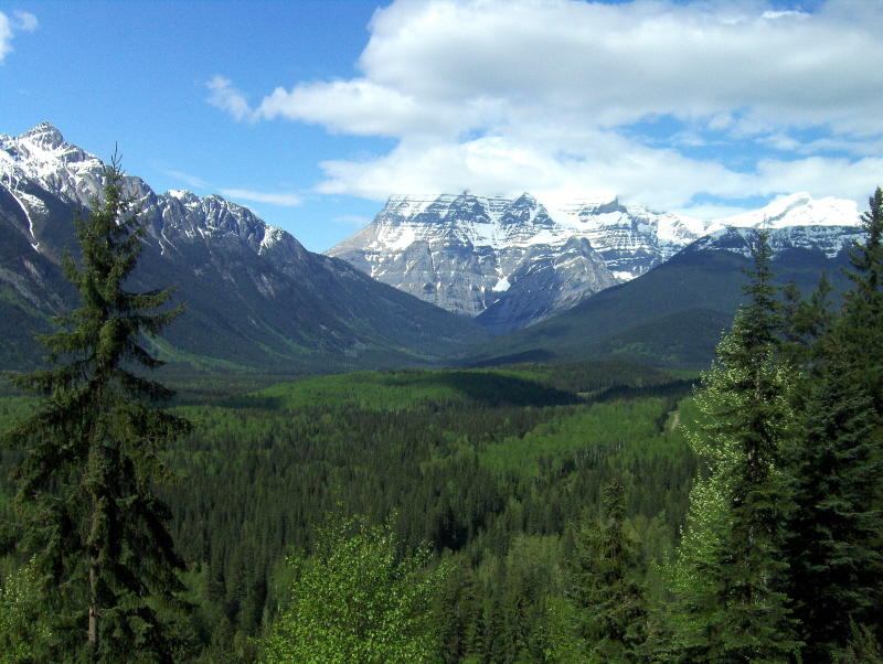 A MOUNT ROBSON   830