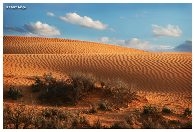 0574b-perry sand hills near Wentworth NSW