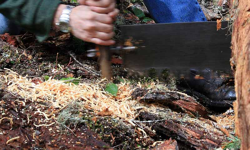 Larry making sawdust