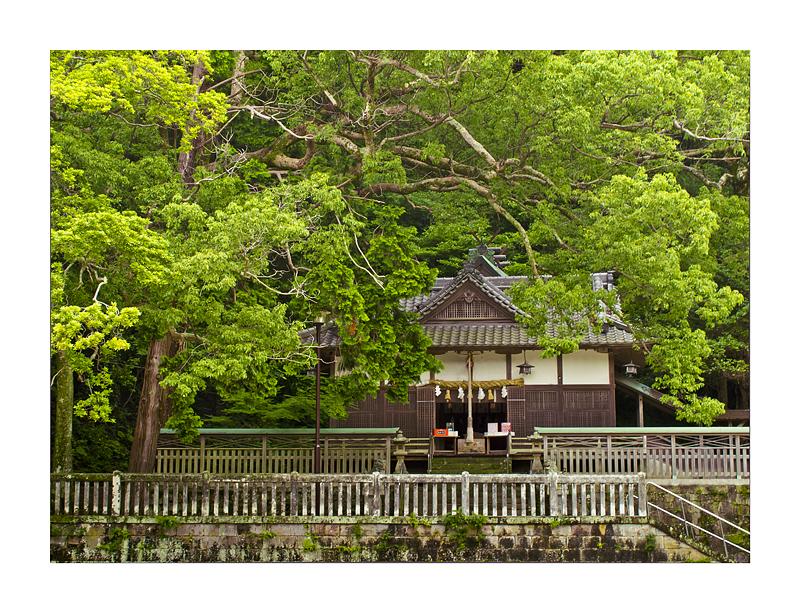 恵美壽神社 SHIRAHAMA