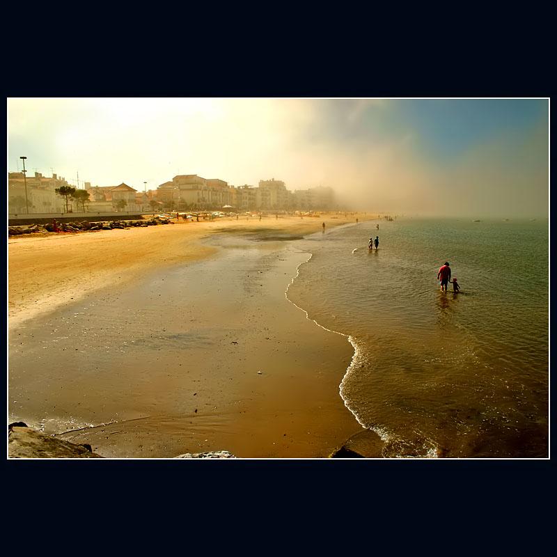 ... Foggy morning ...