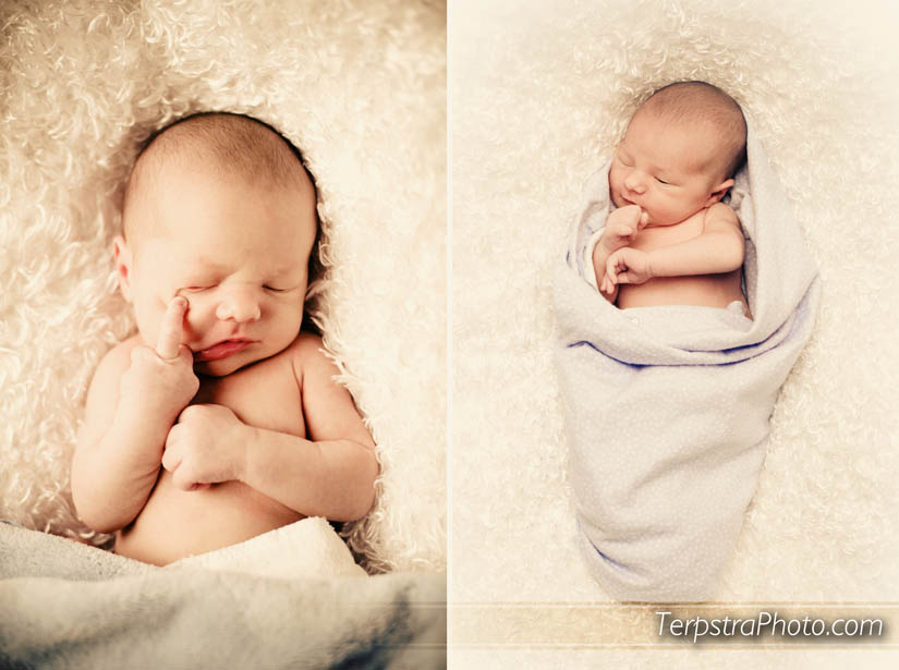 Grand Rapids Baby Photographer :: Luca\'s 5 Day Photos | Terpstra ...