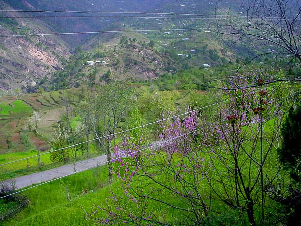 Saver-Bagh Road