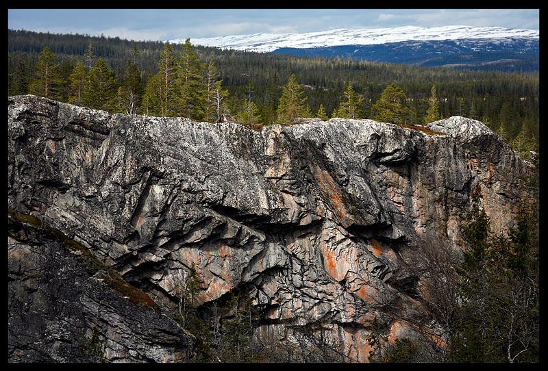 Norwegian Steinfjellet  - on the border to sweden