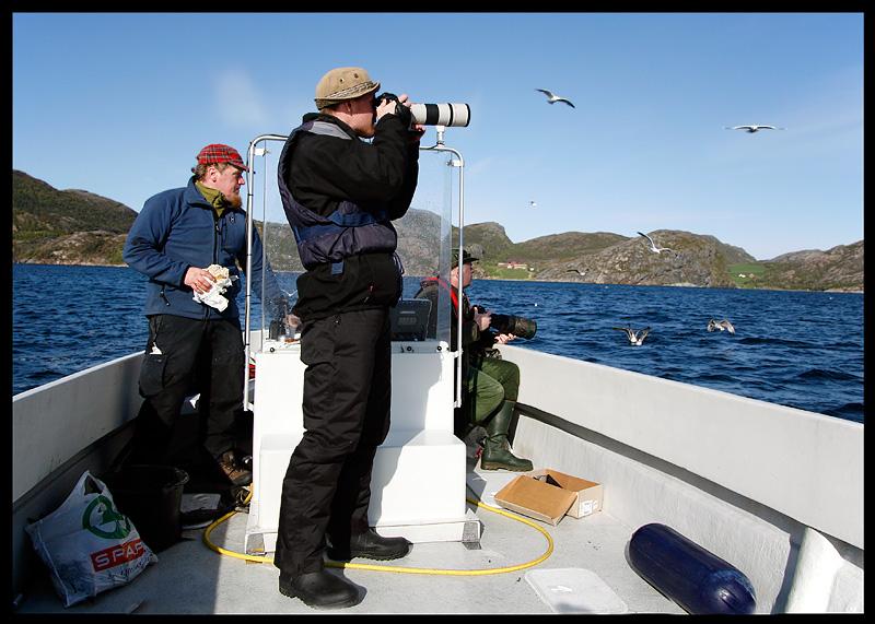 Pontus trying to get photos of the gulls