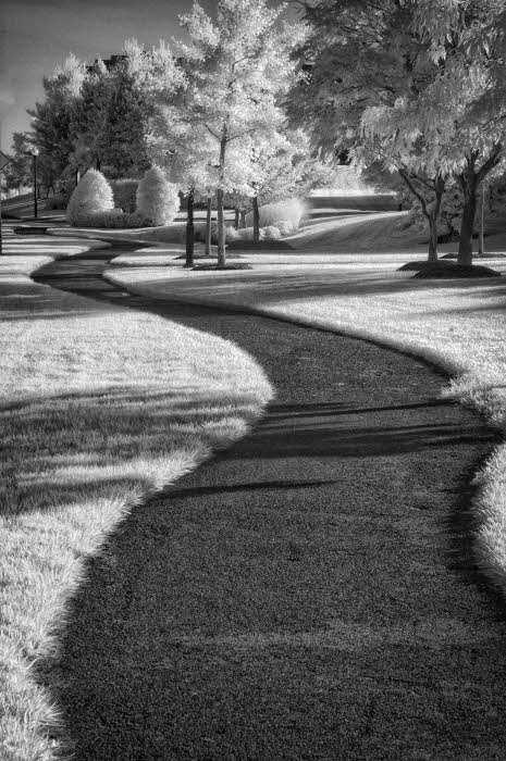 07/02/09 - Sinuous Curve in Infrared
